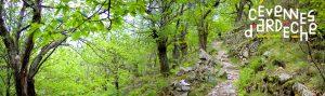 Newsletter pro cévennes d'Ardèche