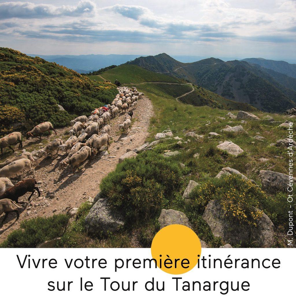 Emprunter le GRP le Tour du Tanargue pour une itinérance de 4 jours