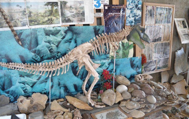 sur les traces des premiers dinosaures
