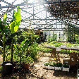 jardins pédagorgiques terre et humanisme