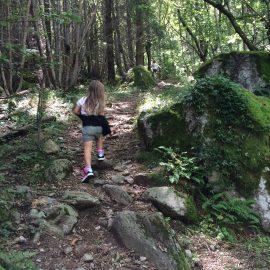 sentier des Druides