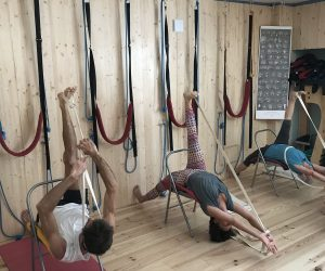 association yoga iyengar joyeuse