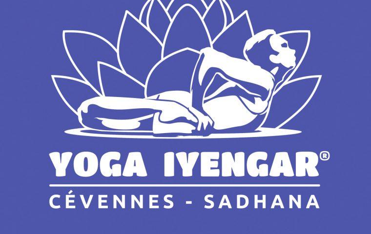 association yoga iyengar joyeuse