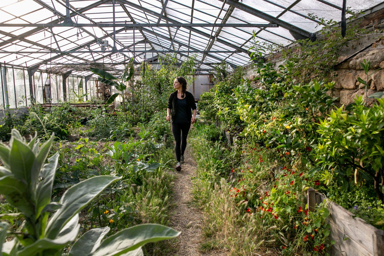 Visite guidée des jardins de Terre & Humanisme