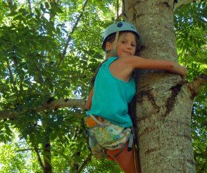 Séjour Bivouac dans les arbres Montselgues